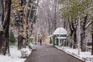 Iarna in Parcul Libertatii