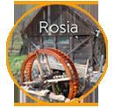 rosia