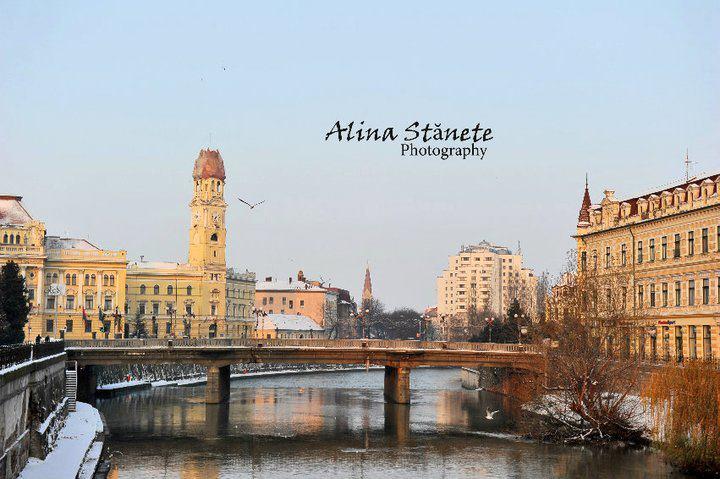 Podul Ferdinand, iarna