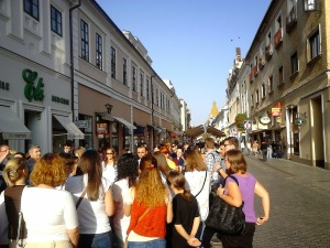 Oradea in zi de sarbatoare3 - Dan Marius