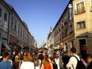 Oradea in zi de sarbatoare5 - Dan Marius