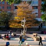 Parcul Magnoliei toamna