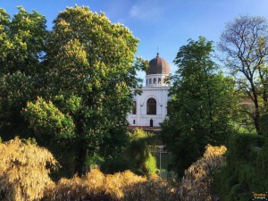 Sinagoga Neologa Zion