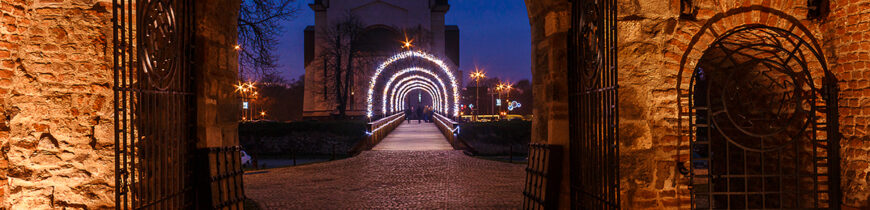 Intrarea in Cetatea din Oradea