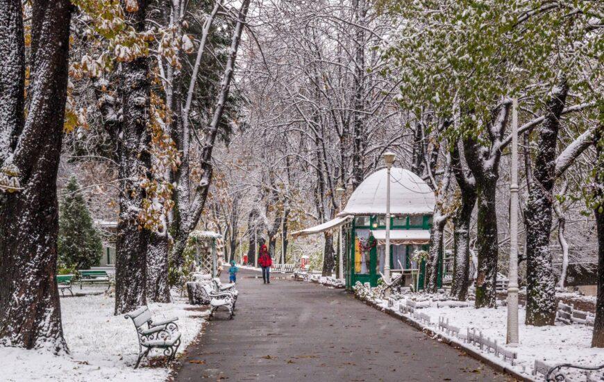 Iarna prin Parcul Libertății
