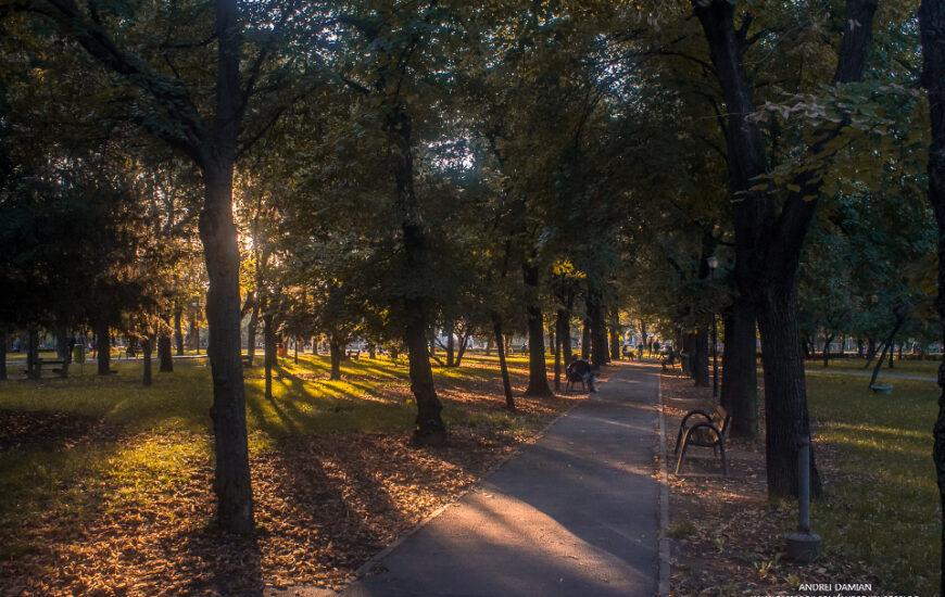Parcul 1 Decembrie