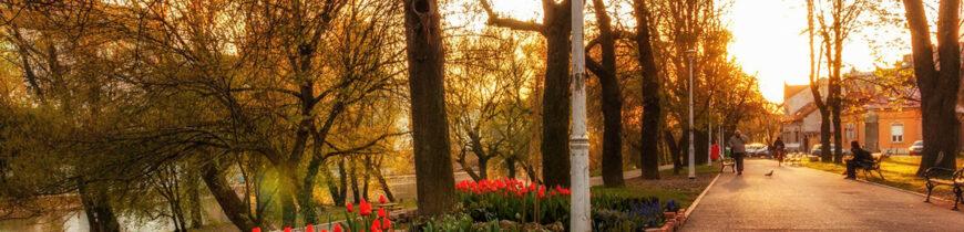 Peisaj de primăvară în Parcul Libertății