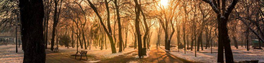 Răsărit în parcul 1 Decembrie